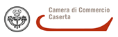 Vice Presidente Camera di Commercio Caserta